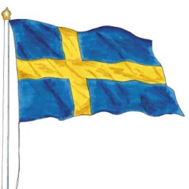 Våga vara stolt svensk, våga ta tillbaka nationalsången till skolavslutning 🇸🇪 #Sverigesnationaldag #sverige
