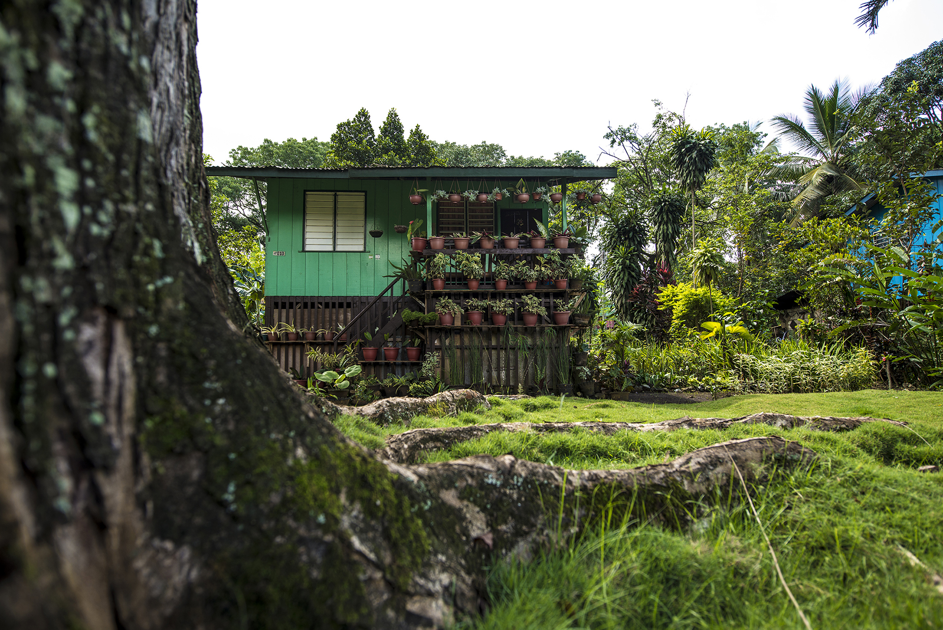 Camp Phillips; Welcome to PUROK, Sampaguitav