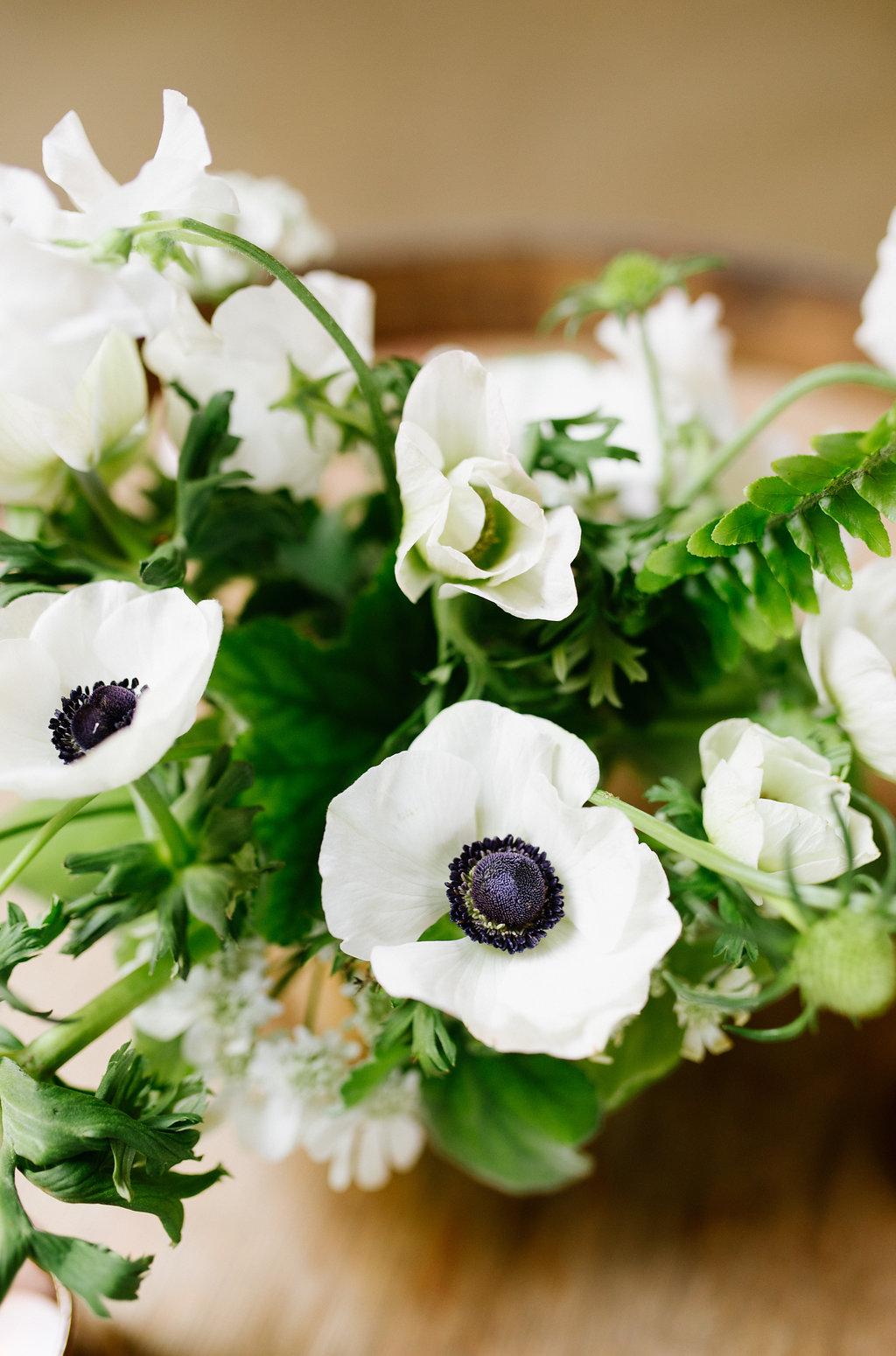 DarcyBrian_wedding_cdp-34.jpg