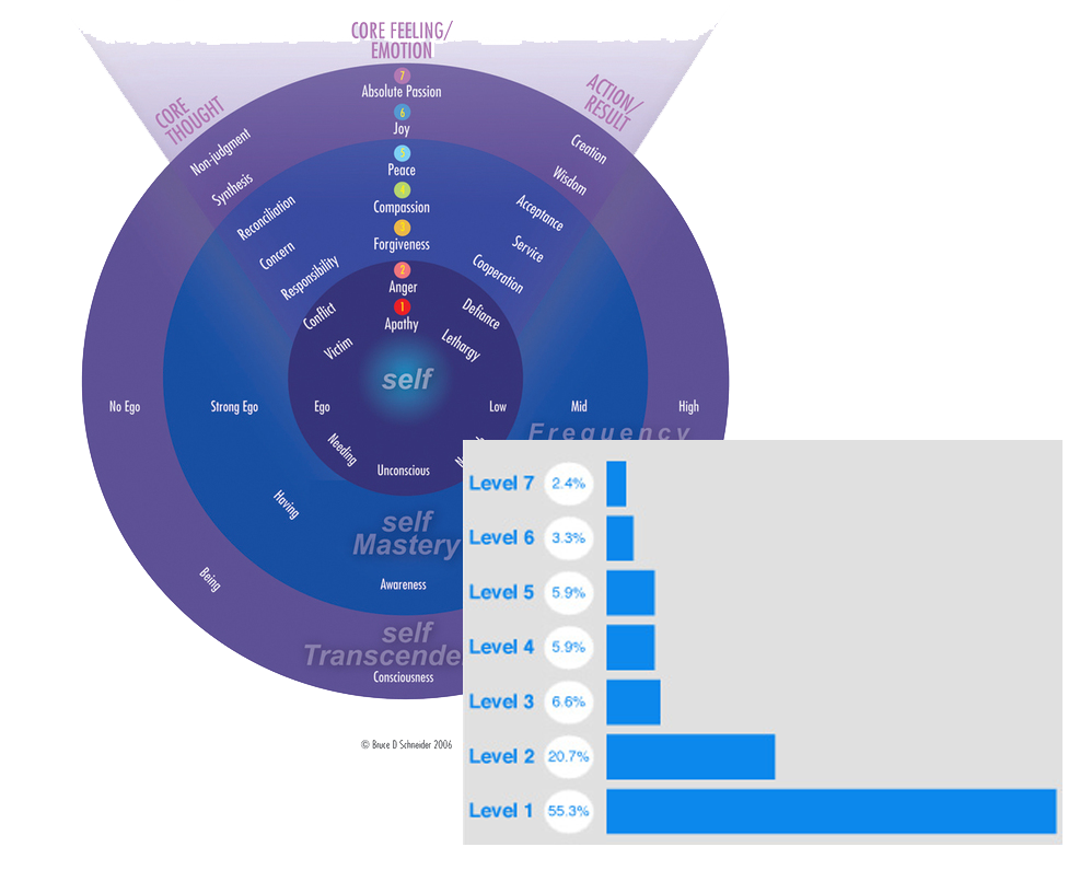 Energy Leadership Index Assessment