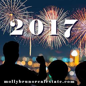 happy-new-year-molly-bruno-2017.jpg