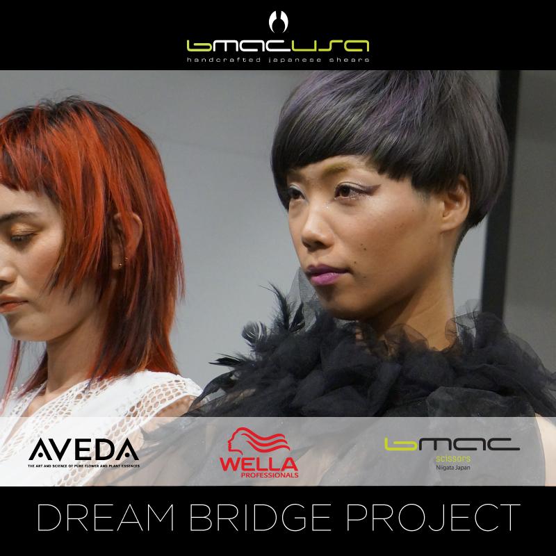 Dream-Bridge-Project-Video-1.jpg