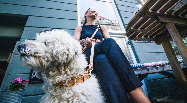 Rolf-&Lazarus-luxury-natural-dog-collar-copenhagen-scandinavian-design.jpg