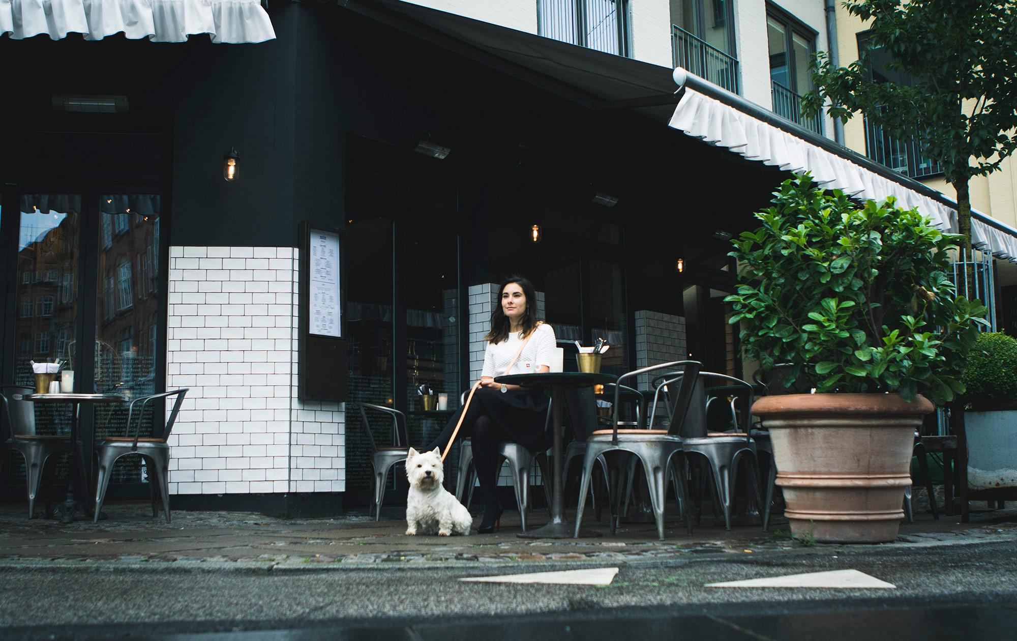 Rolf-and-Lazarus-Street-vesterbro-leash-copenhagen.jpg
