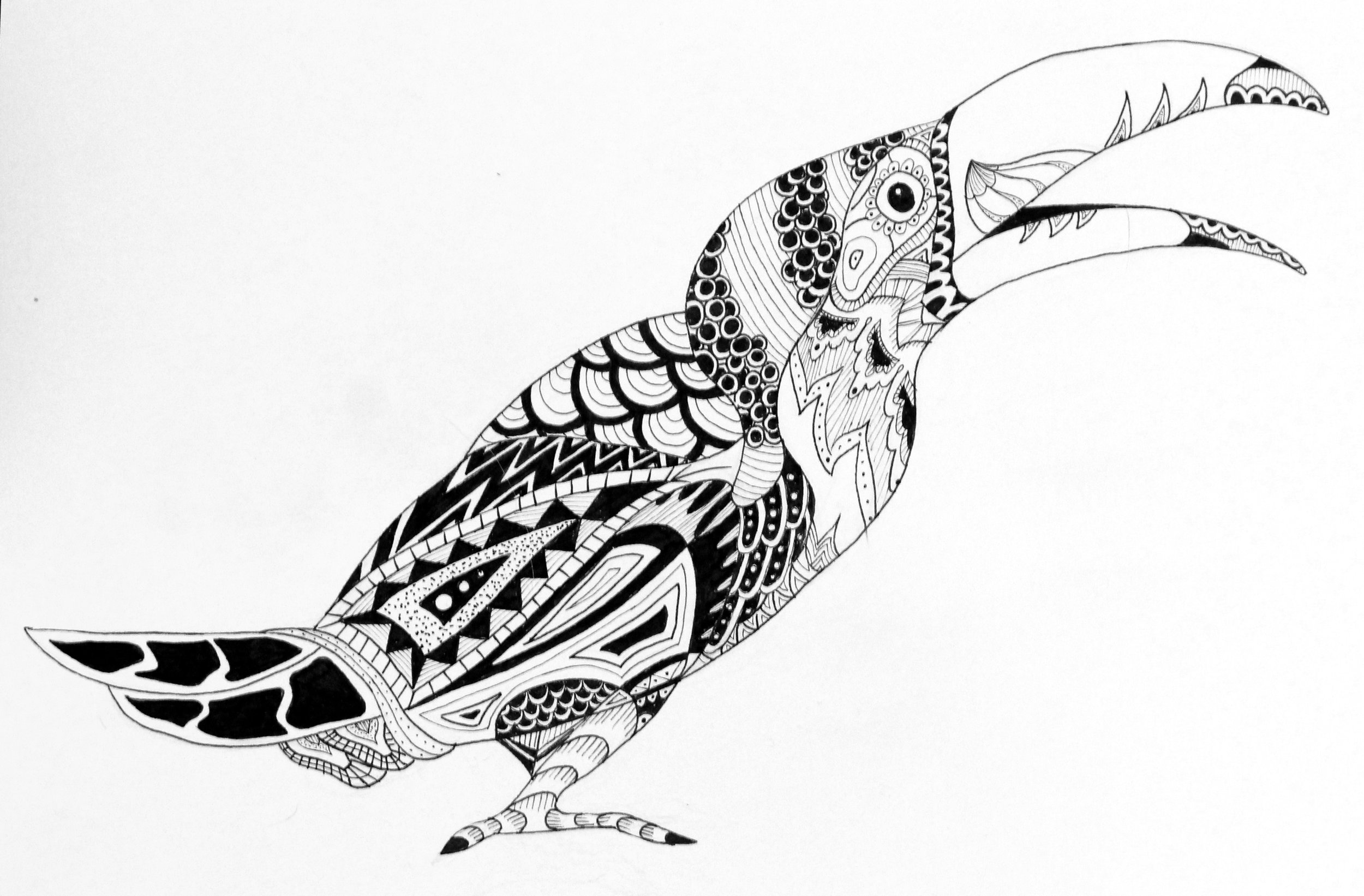 Zentangle Animal Series - Toucan (marker on 9x12 paper)