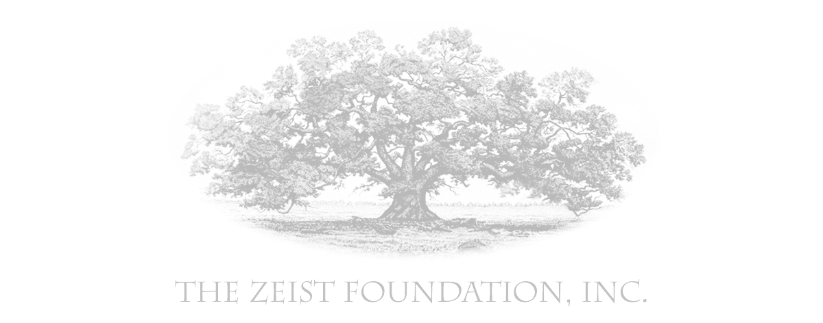 logo_ZeistFoundation.png