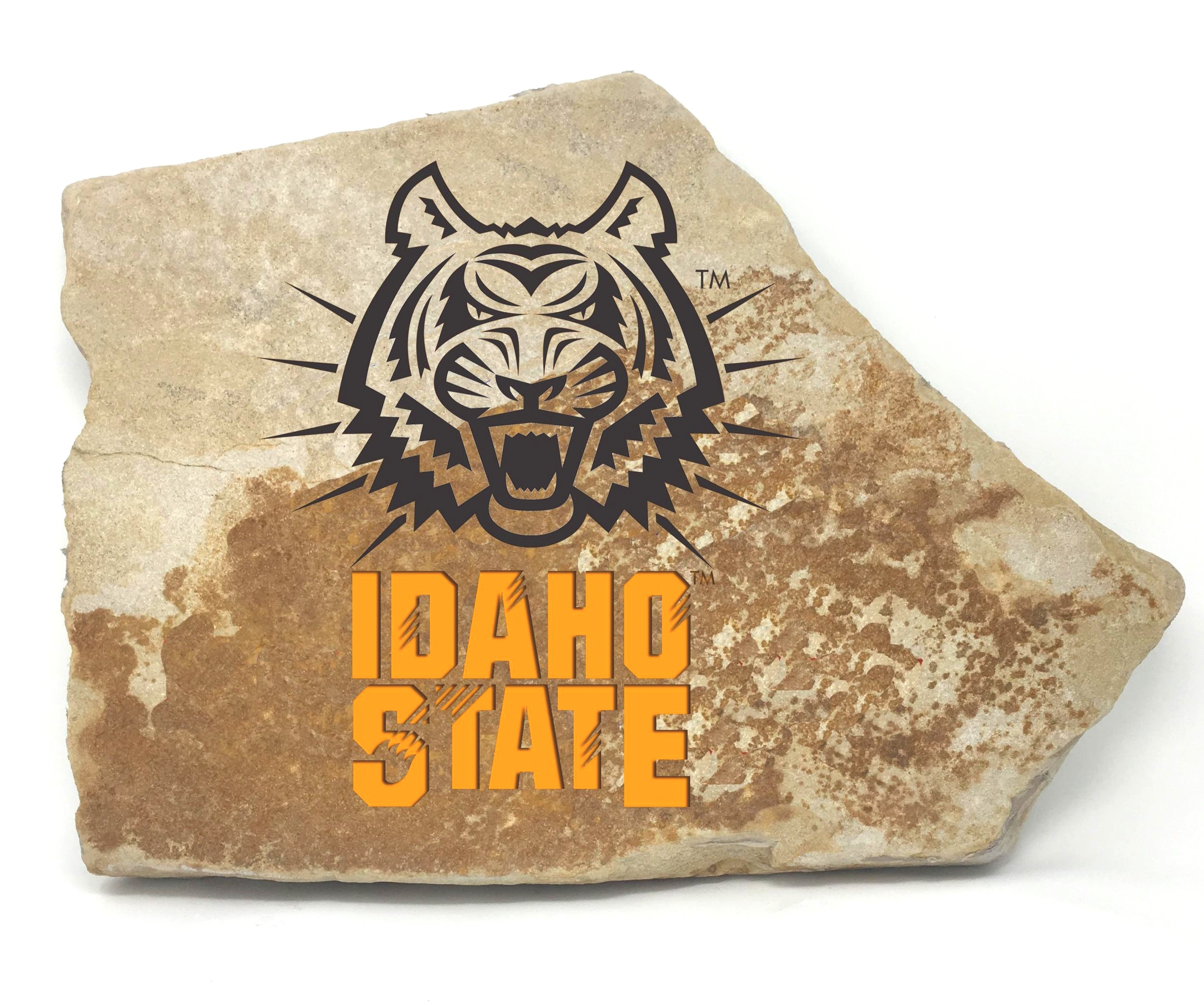 Idaho State University FanRock