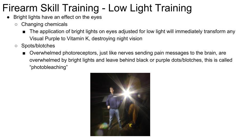 Low Light - Back Lit p 3
