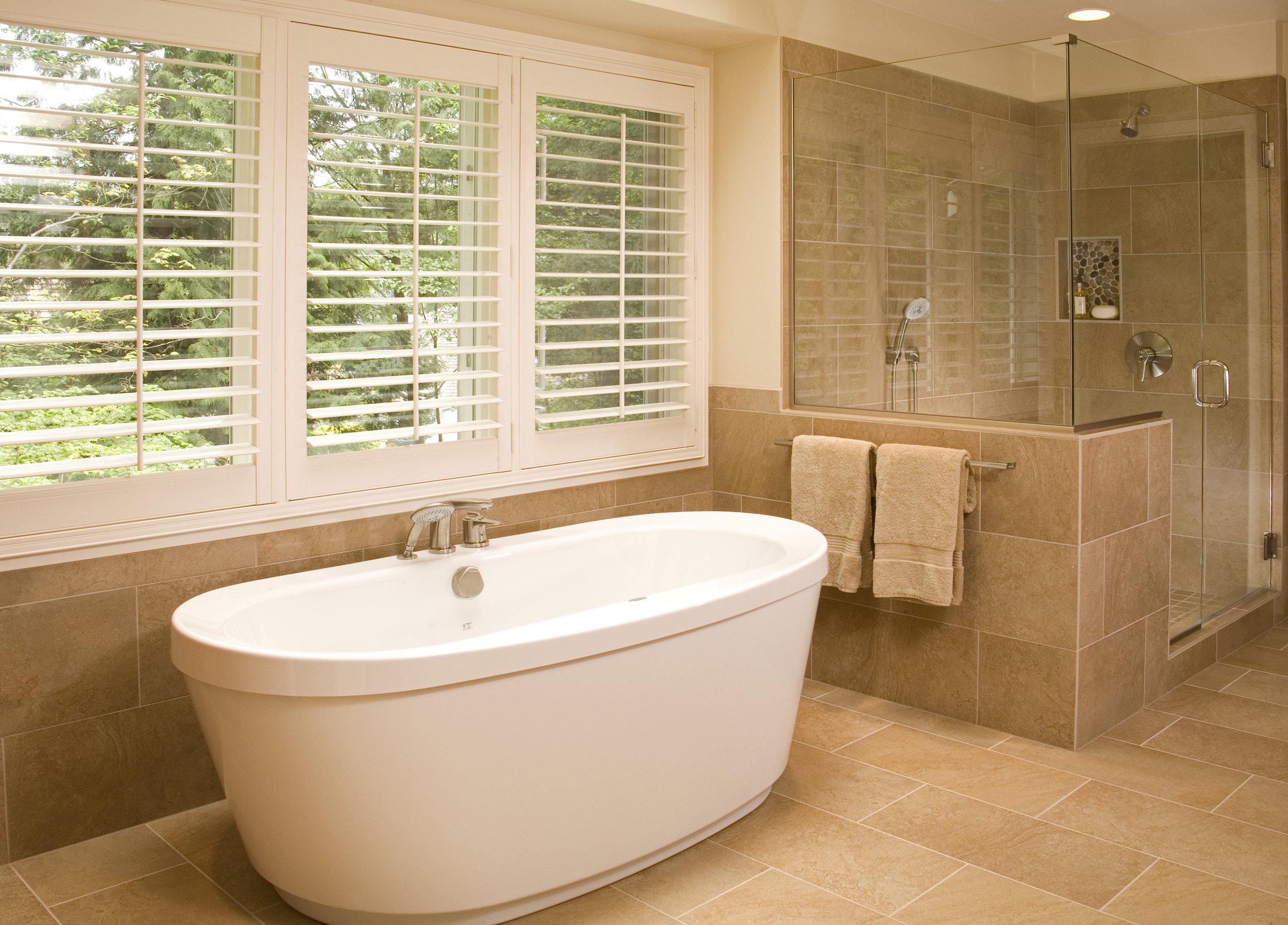 Shower Bath combo pic 001.jpg