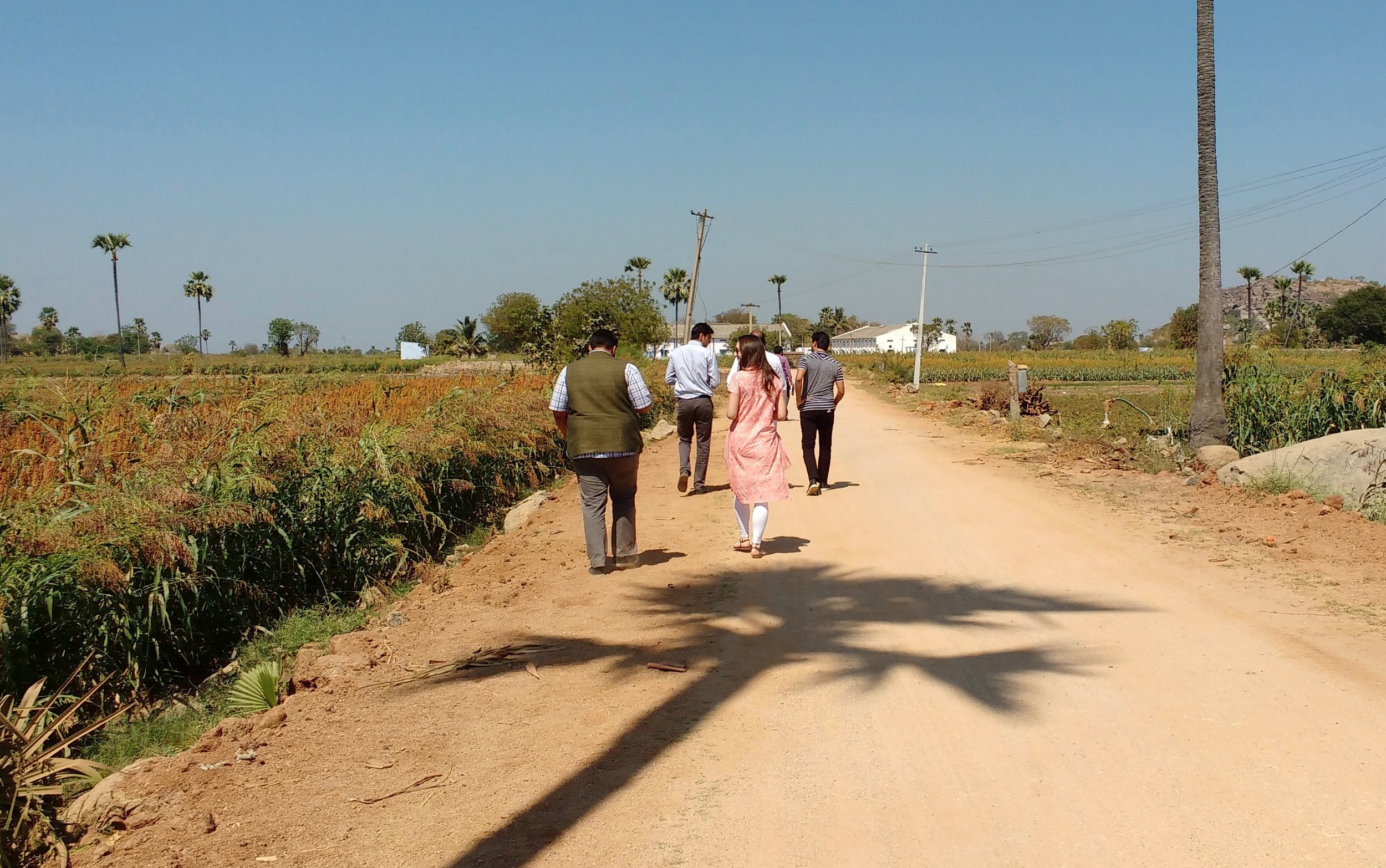 After our initial meetings, we set out with department officials for a tour of Ankapur fields.