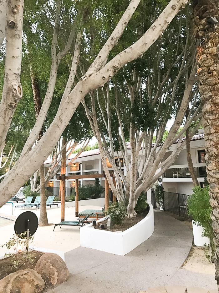 Live Love Blank Blog www.liveloveblank.com The Scott Resort & Spa, Scottsdale, Arizona, AZ, babymoon staycation, weekend trip, valentines day getaway 2017 Jurlique Spa Day Spa