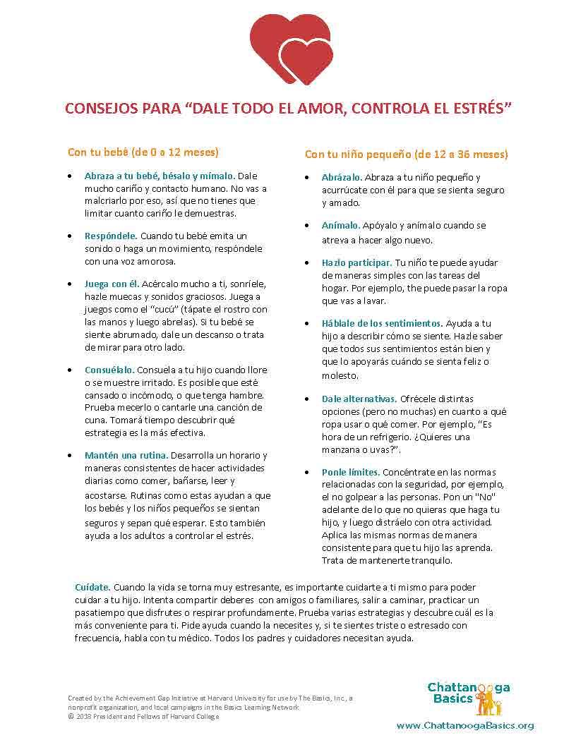 Tip Sheets (Spanish) Chattanooga Basics_Page_1.jpg