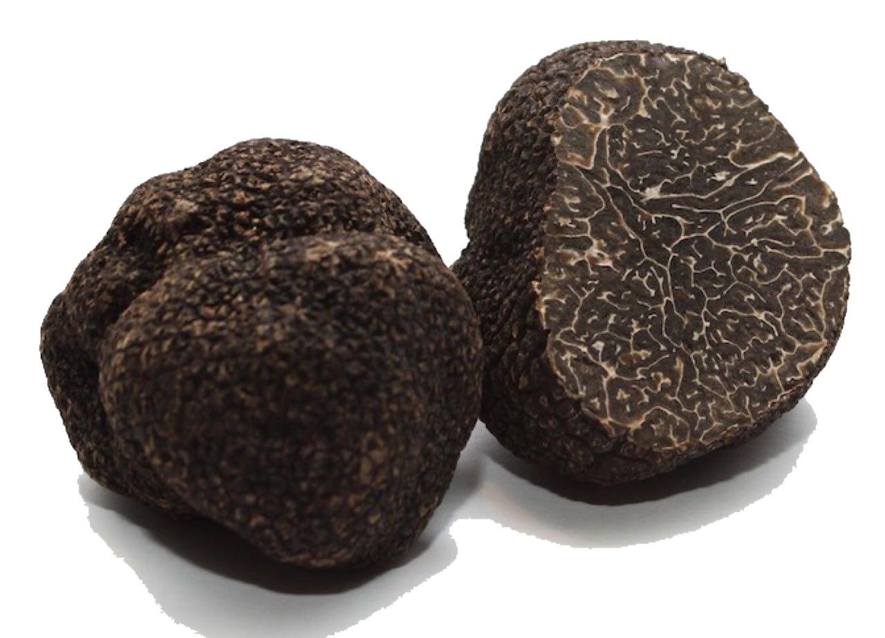 Fresh black truffle.jpg
