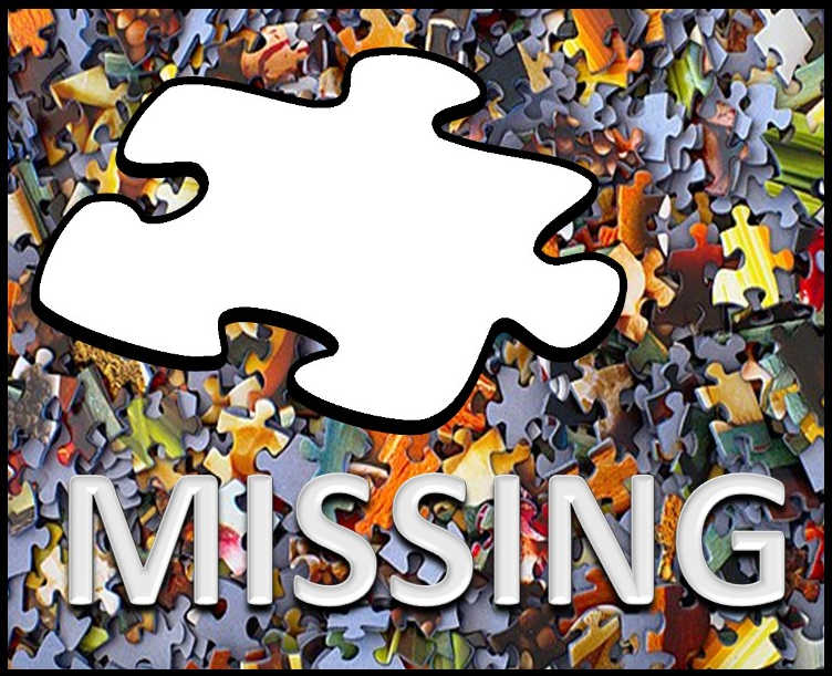 Missing Puzzle Piece.jpg