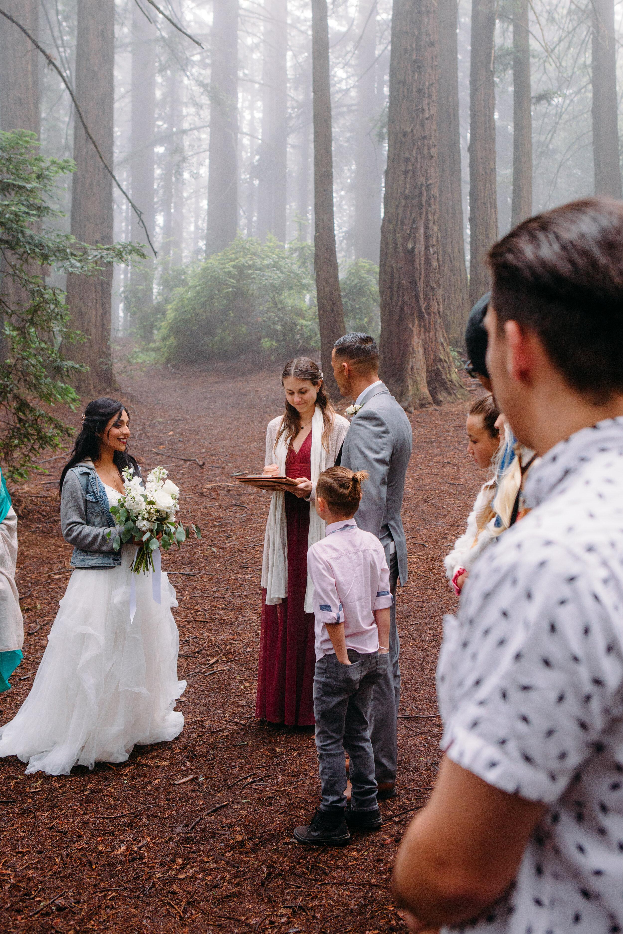 20190615-SanFrancisco-Redwood Regional-Vishali Kameron--15.jpg