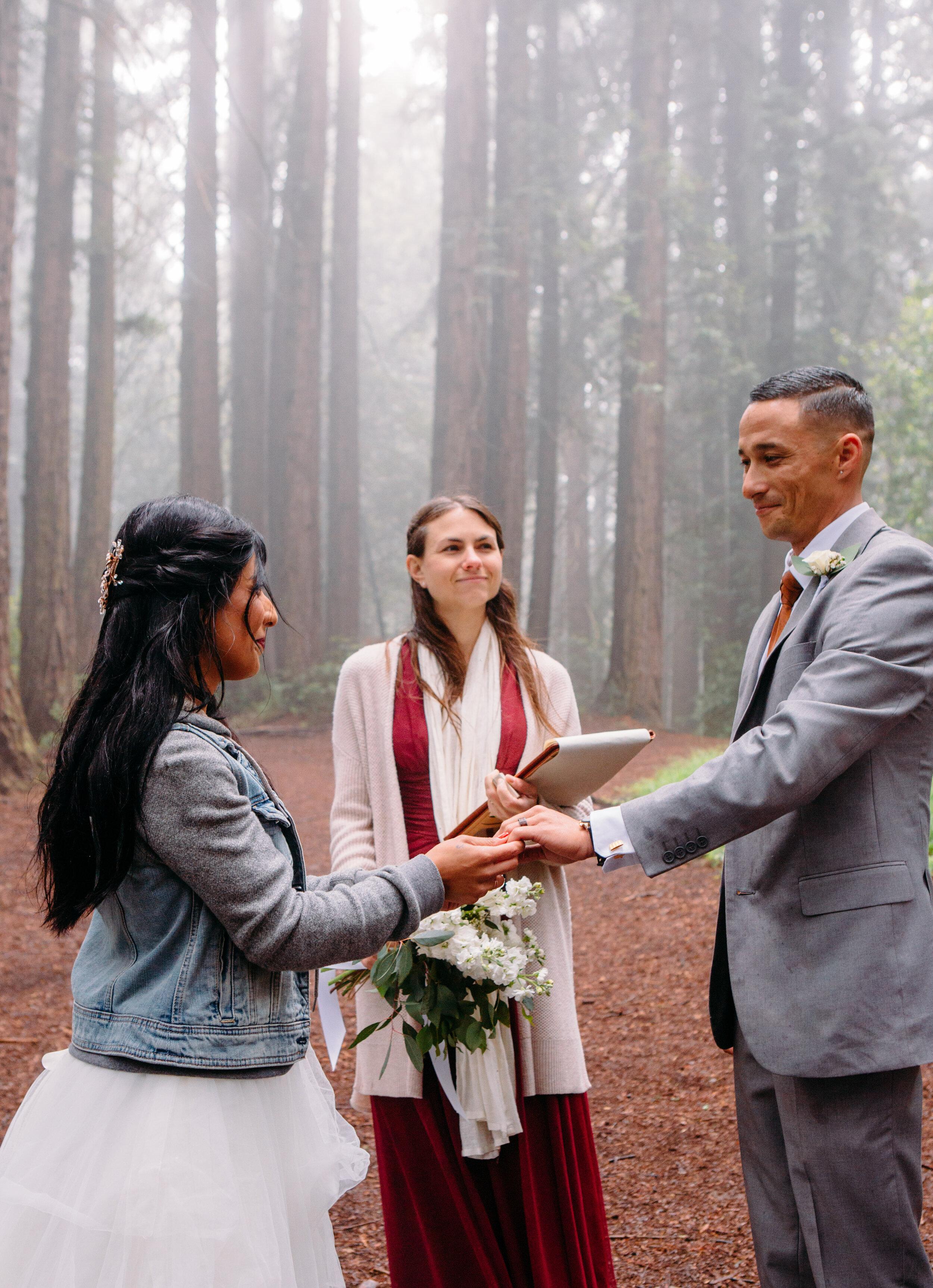 20190615-SanFrancisco-Redwood Regional-Vishali Kameron--61.jpg