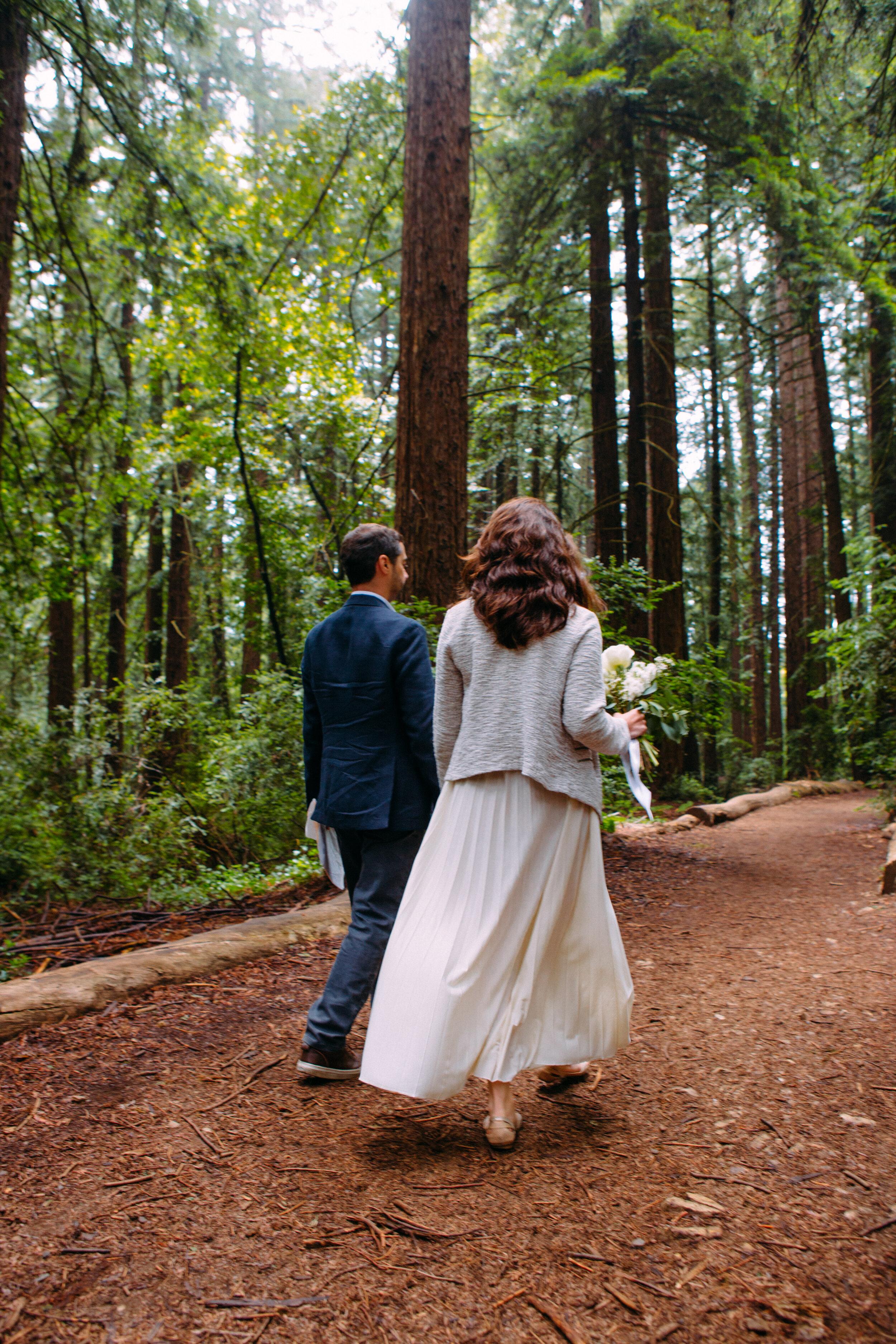 20190716-San Francisco-Redwood Regional Park-Marcella Daniele--4.jpg