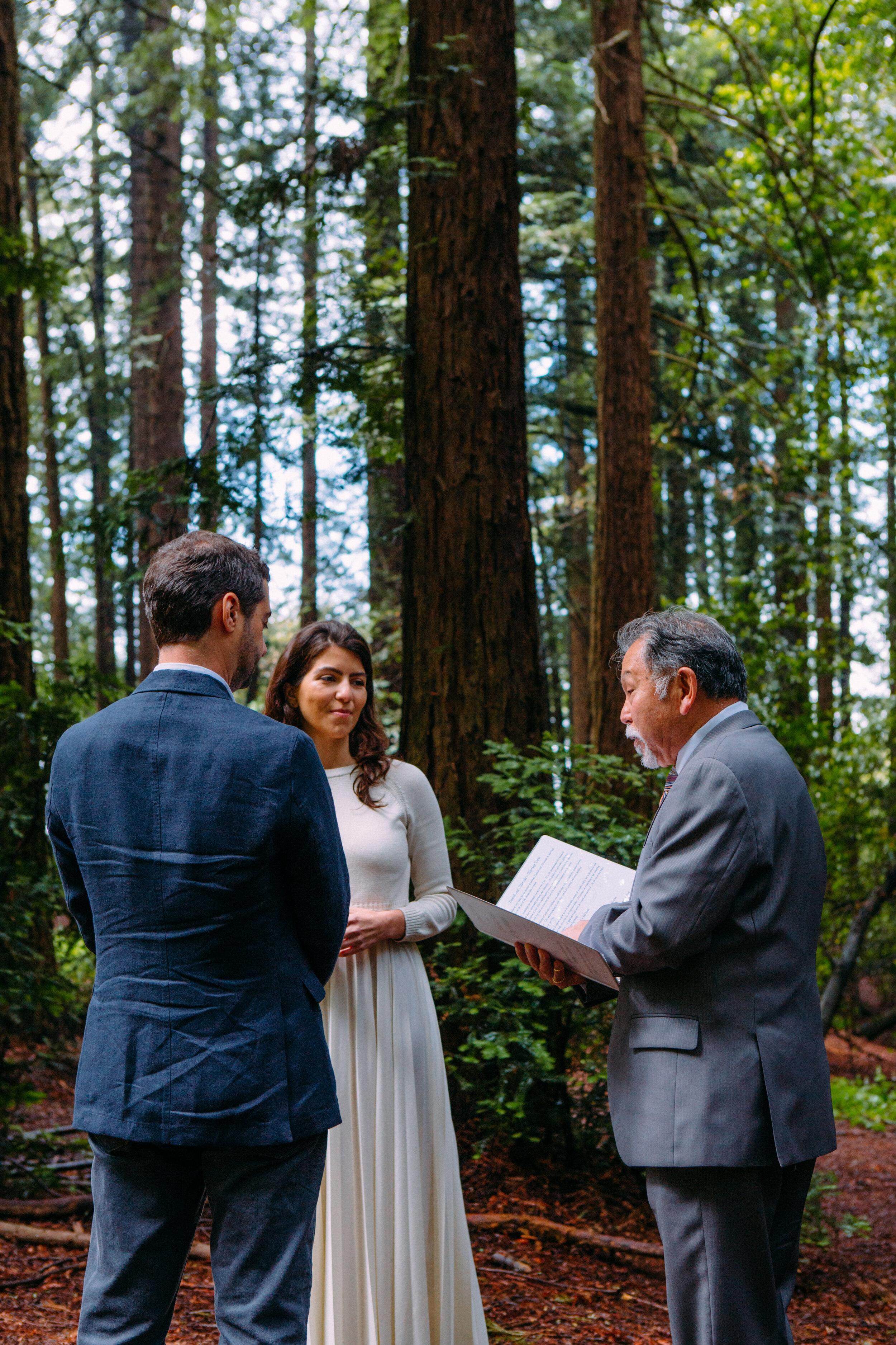 20190716-San Francisco-Redwood Regional Park-Marcella Daniele--14.jpg