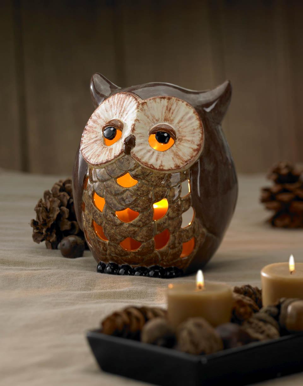 OwlLanternCover.jpg