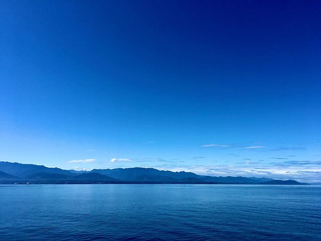 Lascia che mi perda nel blu.  #portangeles #olympicpeninsula #pnw #olympicnationalpark #pnwonderland #sequim #pacificnorthwest #washington #nationalpark #clallamcounty #washingtonstate #explorewashington #upperleft #porttownsend #pacificnw #upperleftusa #pnwdiscovered #neahbay #pnwisbeautiful #nationalparks #pnwadventures #adventure #pnwhiking #washingtoncoast #olympicnationalforest #explorepnw #national_park_photography #olympicnp