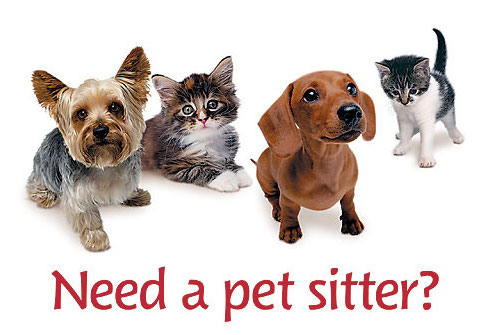 Pet_Sitter.jpg