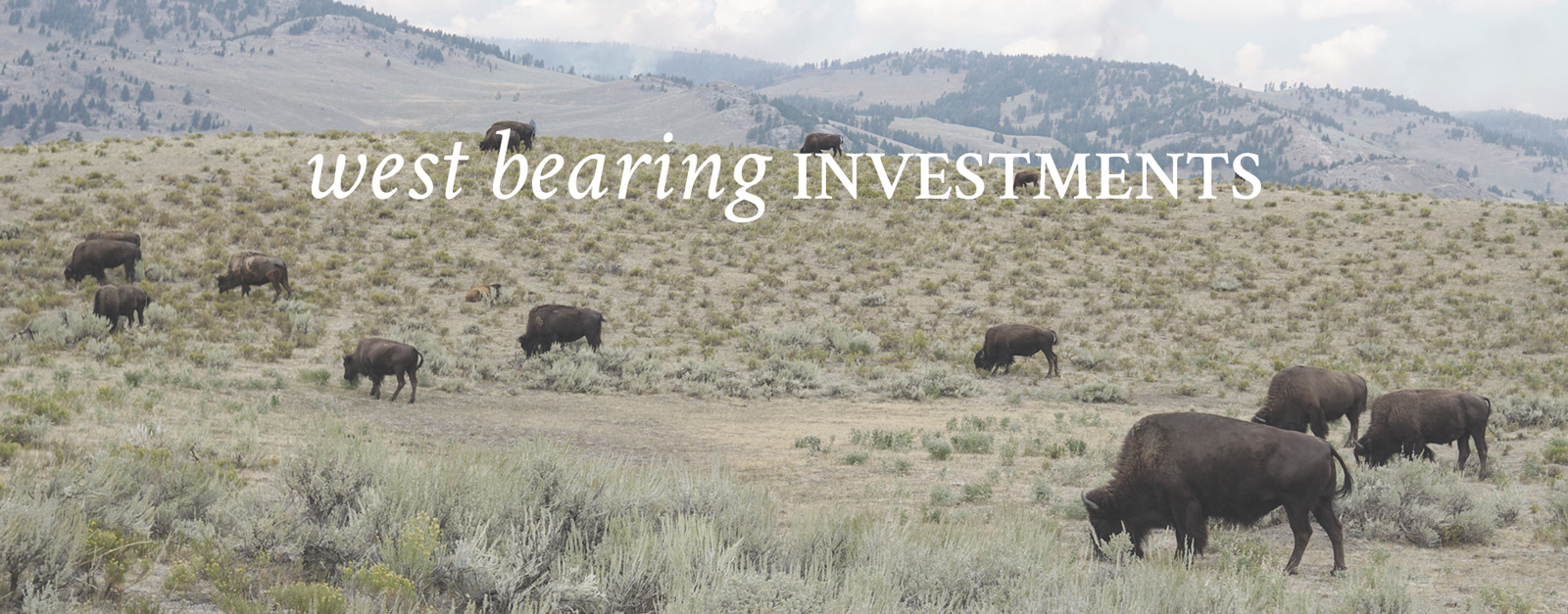 West Bearing Investments