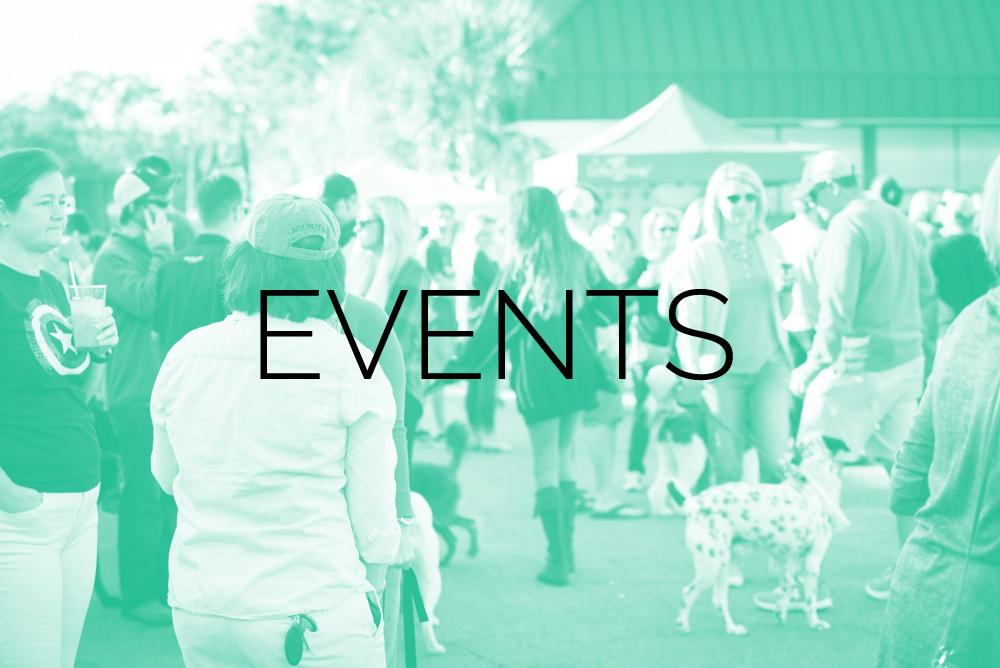 Lowcountry Dog EVENTS 2.jpg