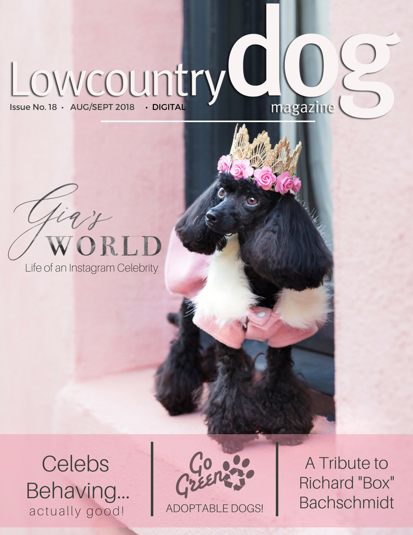 Lowcountry Dog Magazine- Agust 2018 Cover.png