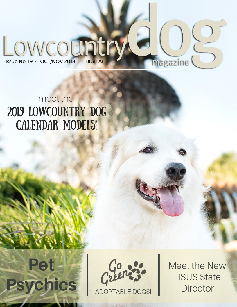 Read the latest Lowcountry Dog Magazine