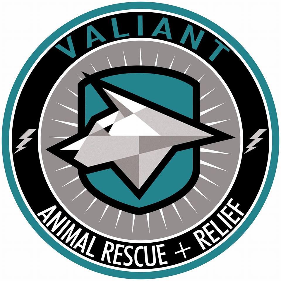VARR Logo.jpg