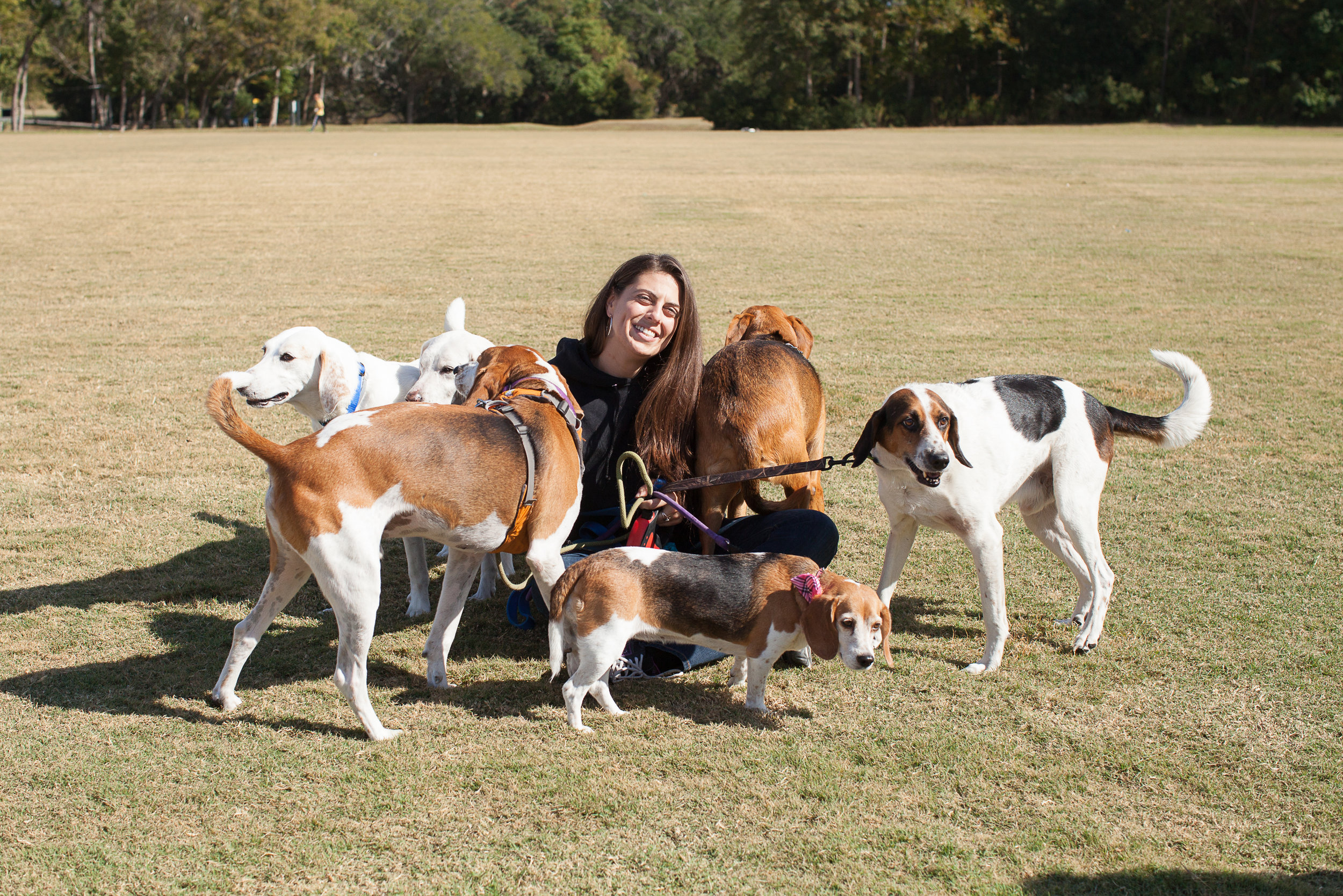 Forensic Specialist and Valiant Director, Michelle Reid with some of the rescued hounds