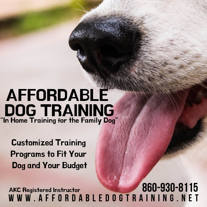 AFFORDABLE DOG TRAINING.png