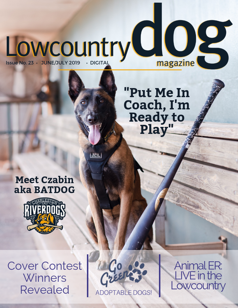 Read the latest here - June/July 2019 Issue