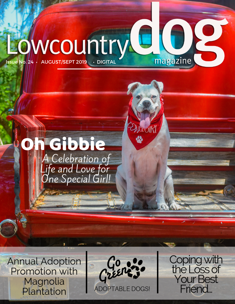 Read the latest Issue of Lowcountry Dog Magazine - August/September 2019
