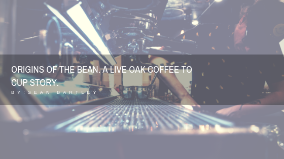 Origins Of The Bean. A Live oak coffee to cup story. by _ Sean Bartley.png