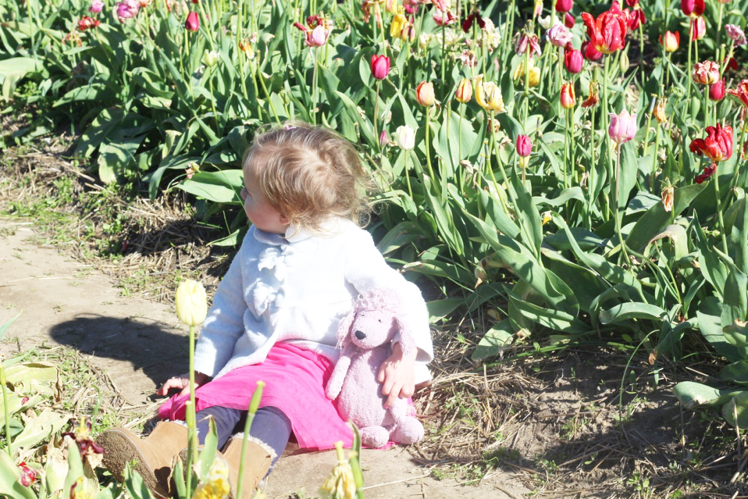 Tulip Time Festival So Dressed Up