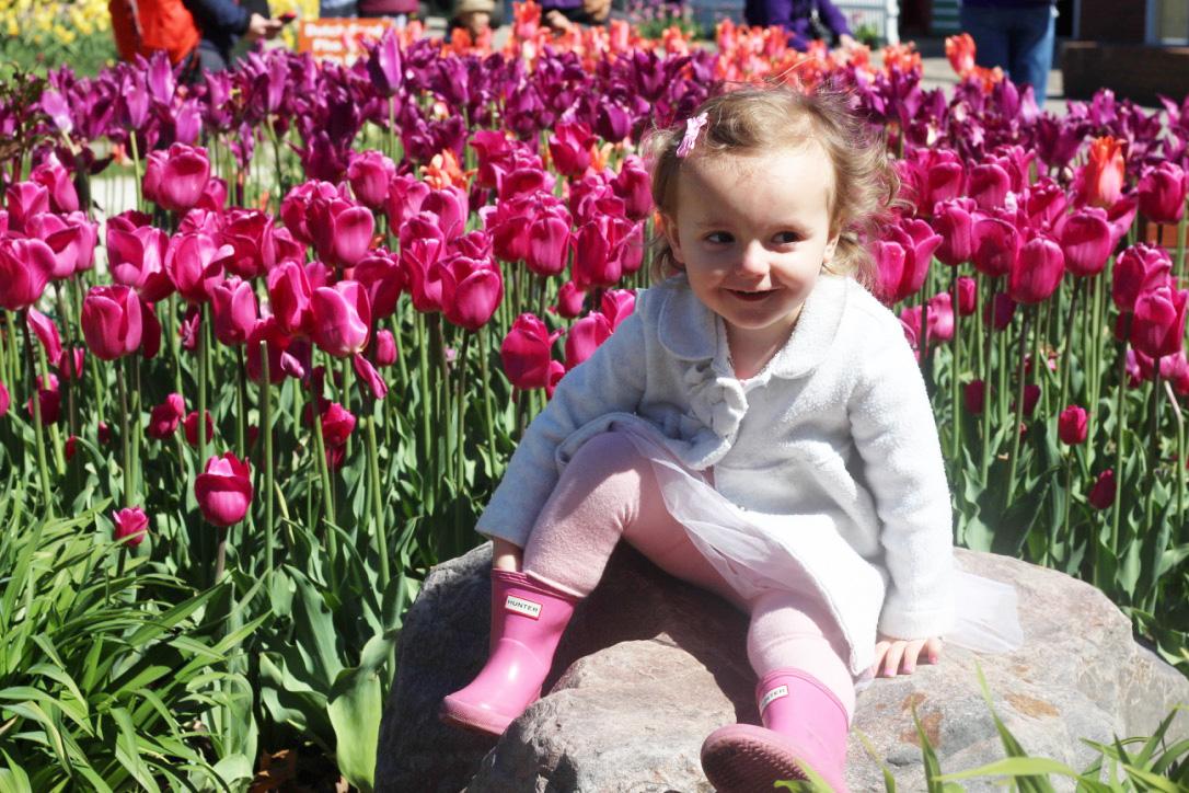 Tulip Festival, Windmill Island Gardens, So Dressed Up