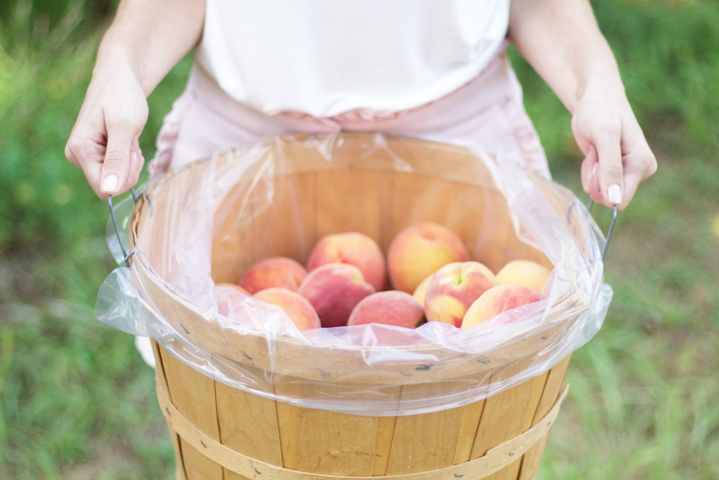Peach Picking So Dressed Up