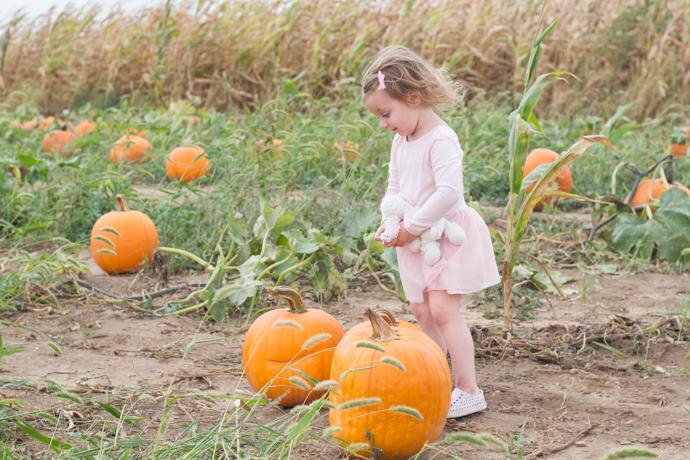 So Dressed Up Pumpkin Patch (2 of 14).jpg