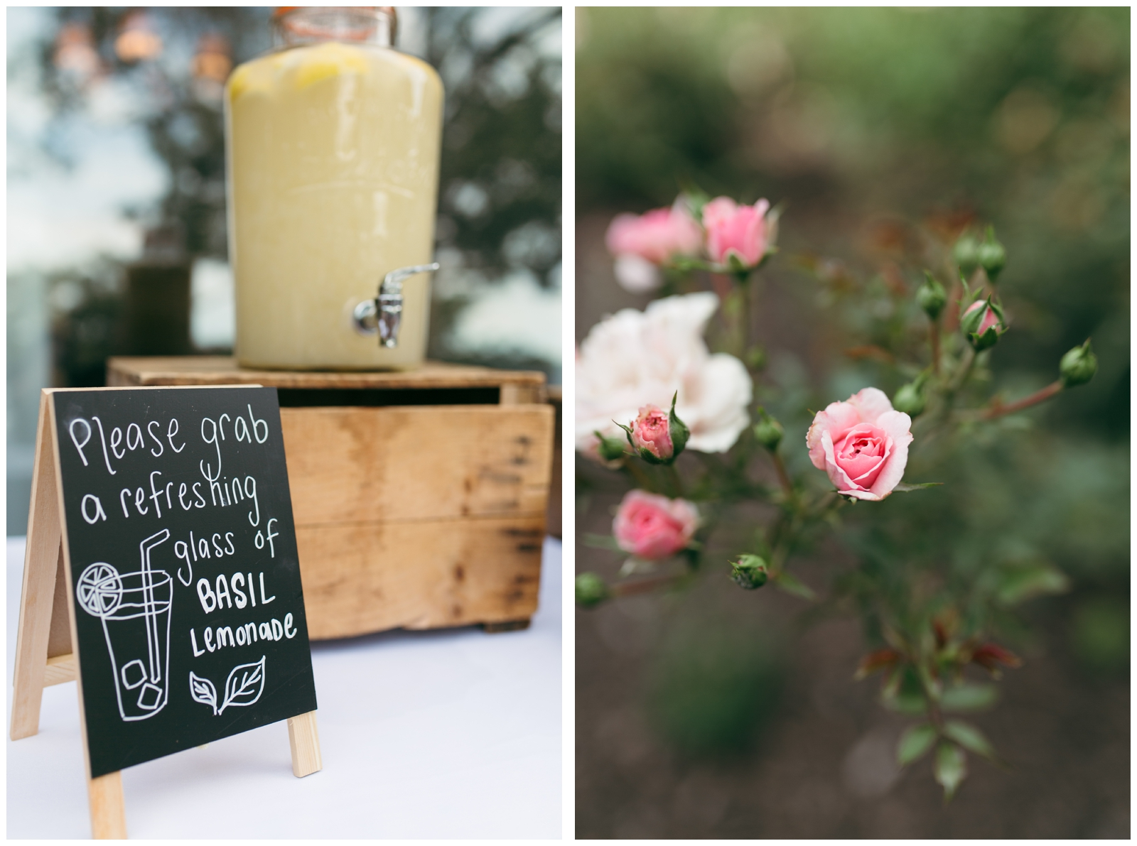 Moraine-Farm-wedding-Bailey-Q-Photo-Massachusetts-wedding-photpgrapher-087.jpg