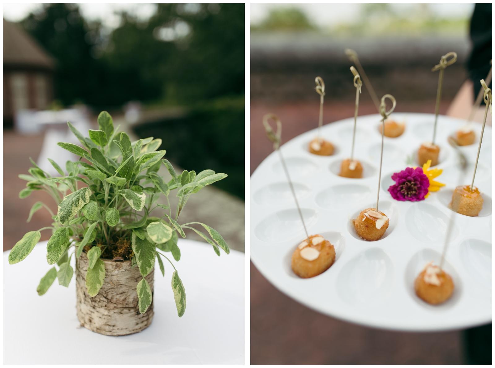 Moraine-Farm-wedding-Bailey-Q-Photo-Massachusetts-wedding-photpgrapher-088.jpg