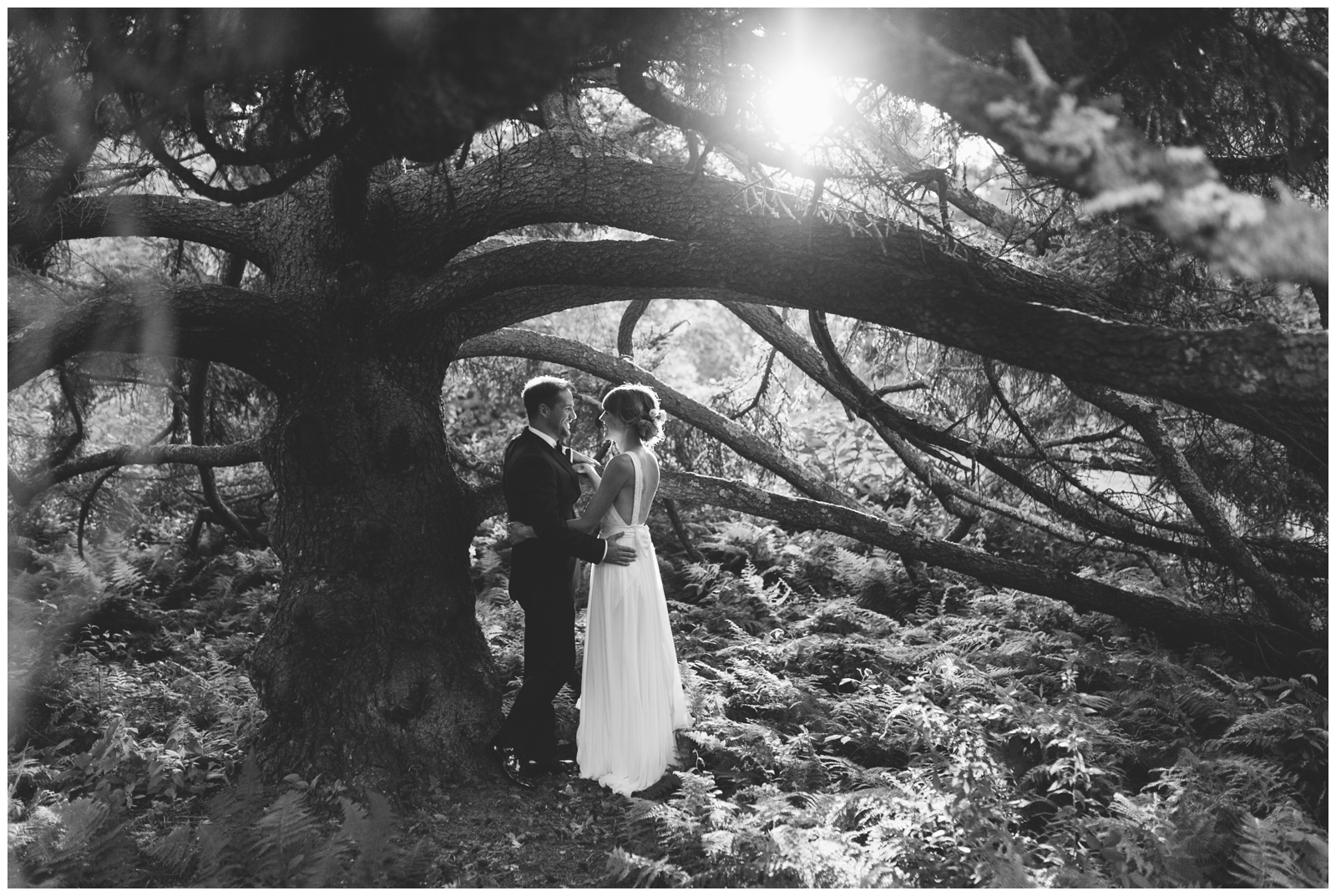 Moraine-Farm-wedding-Bailey-Q-Photo-Massachusetts-wedding-photpgrapher-102.jpg