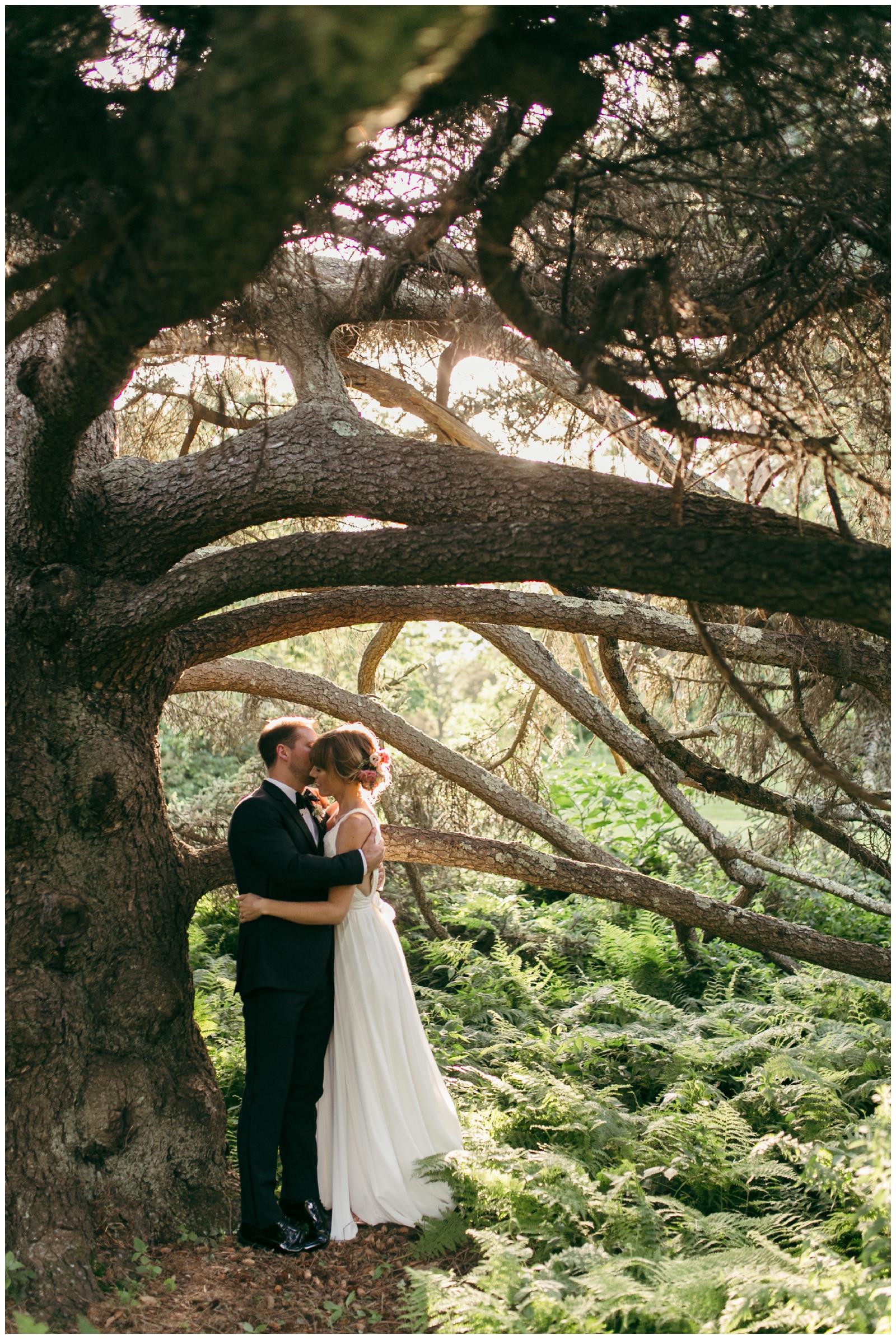 Moraine-Farm-wedding-Bailey-Q-Photo-Massachusetts-wedding-photpgrapher-103.jpg