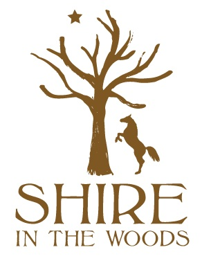 Angie is the official yoga instructor for Shire In The Woods     http://shireinthewoods.com/