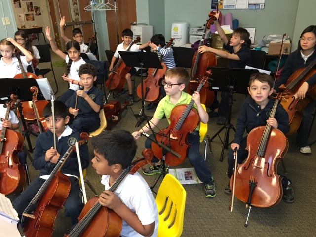 Primoris Cello Section