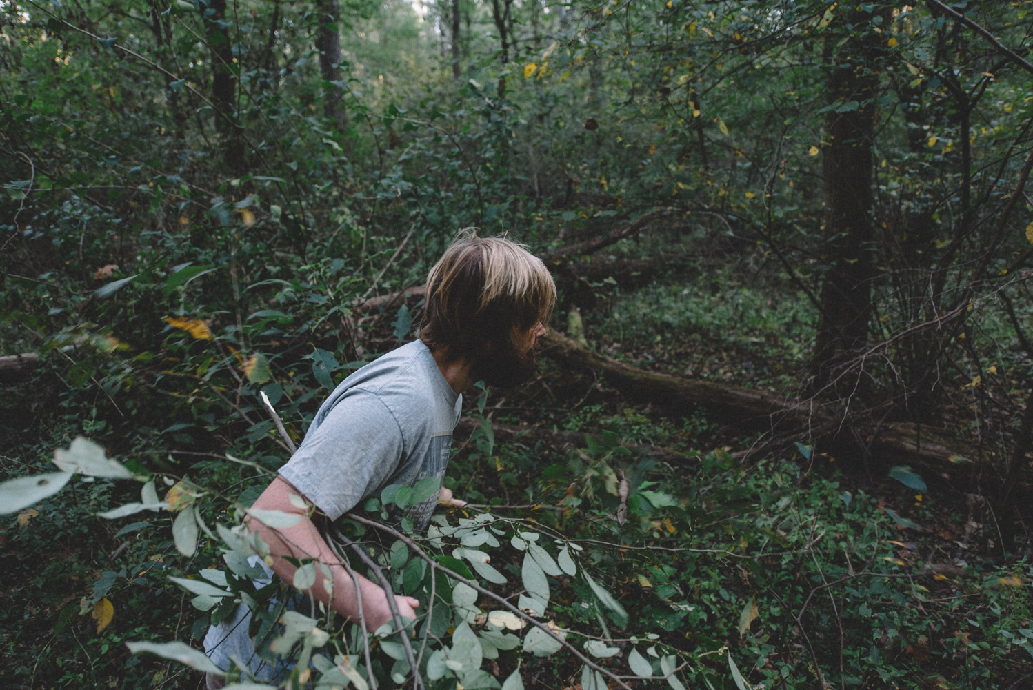 Scratch-Brewing-Co-Foraging-Carbondale-Ava-Illinois-Good-Beer-Hunting-Matt-Sampson-Photography_820.jpg