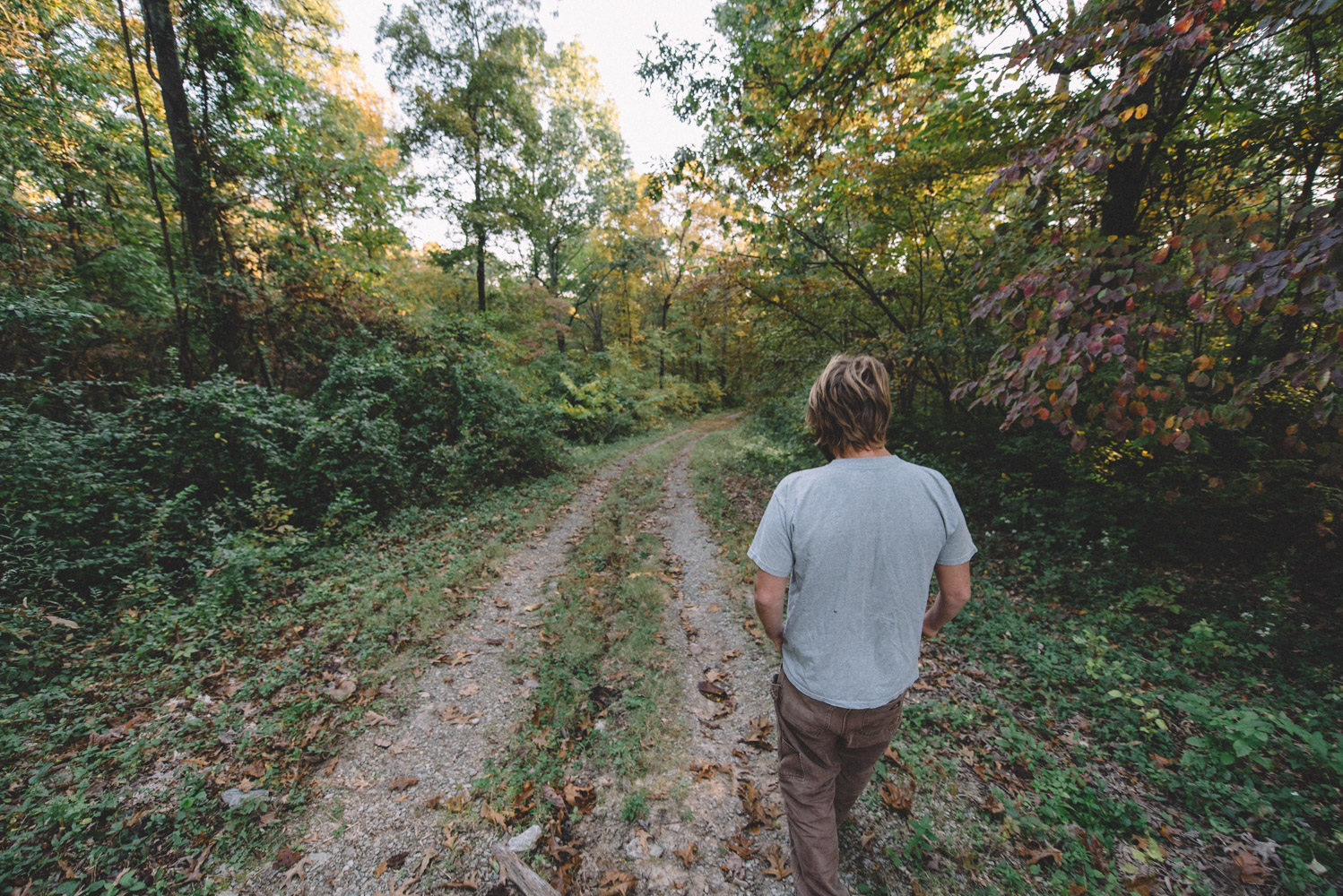 Scratch-Brewing-Co-Foraging-Carbondale-Ava-Illinois-Good-Beer-Hunting-Matt-Sampson-Photography_800.jpg