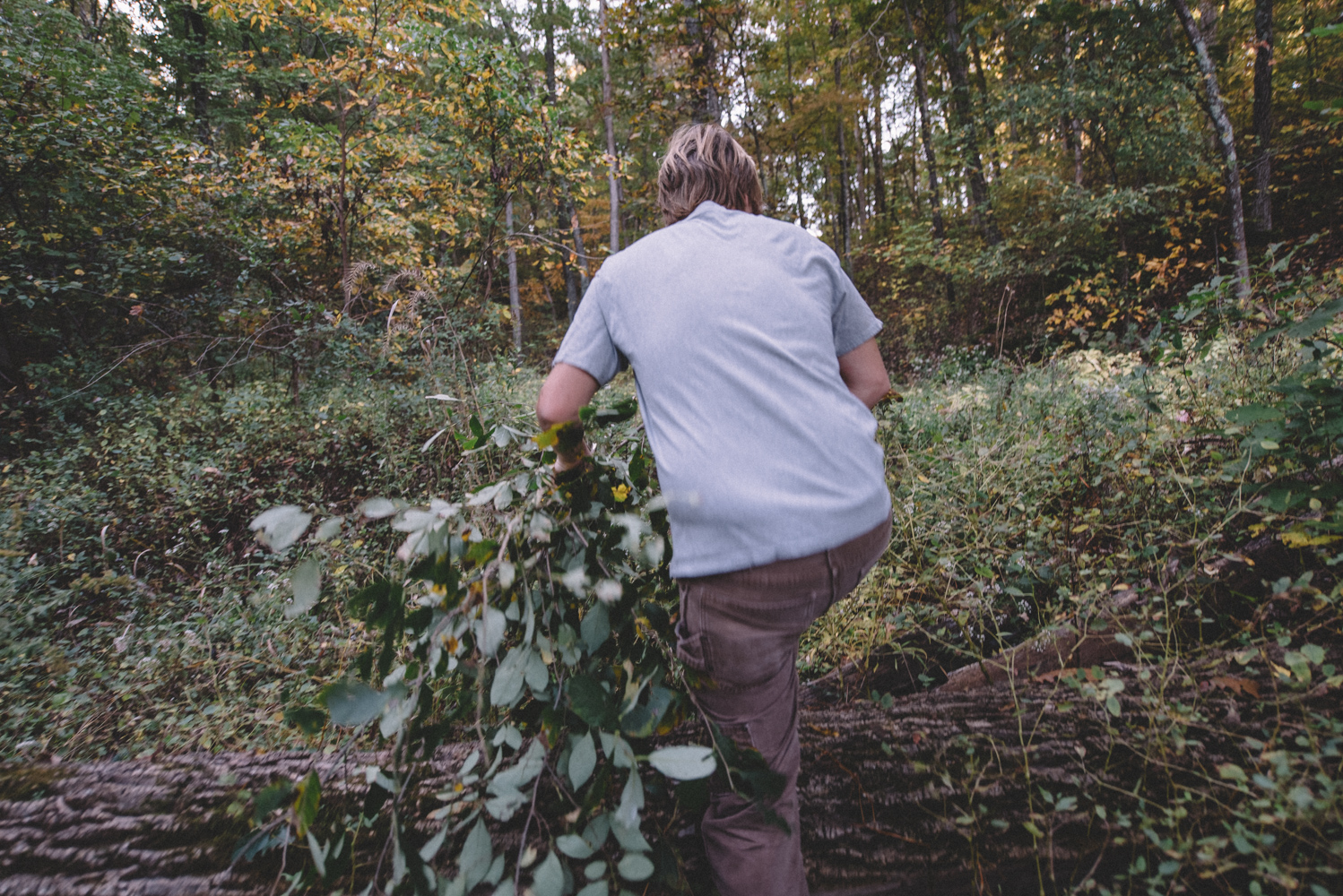 Scratch-Brewing-Co-Foraging-Carbondale-Ava-Illinois-Good-Beer-Hunting-Matt-Sampson-Photography_1-020.jpg