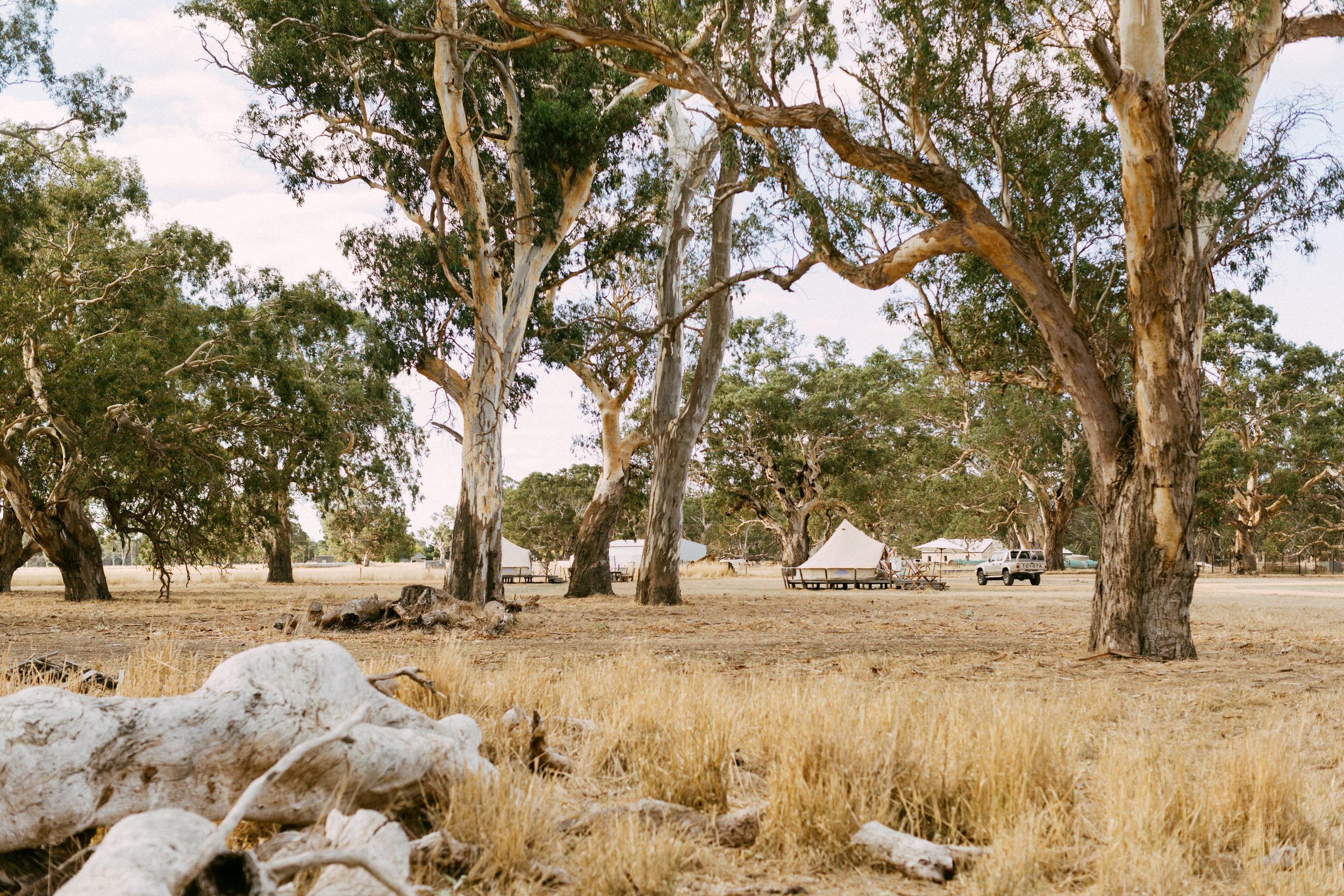 Coonawarra Elopement South Australia 016.jpg