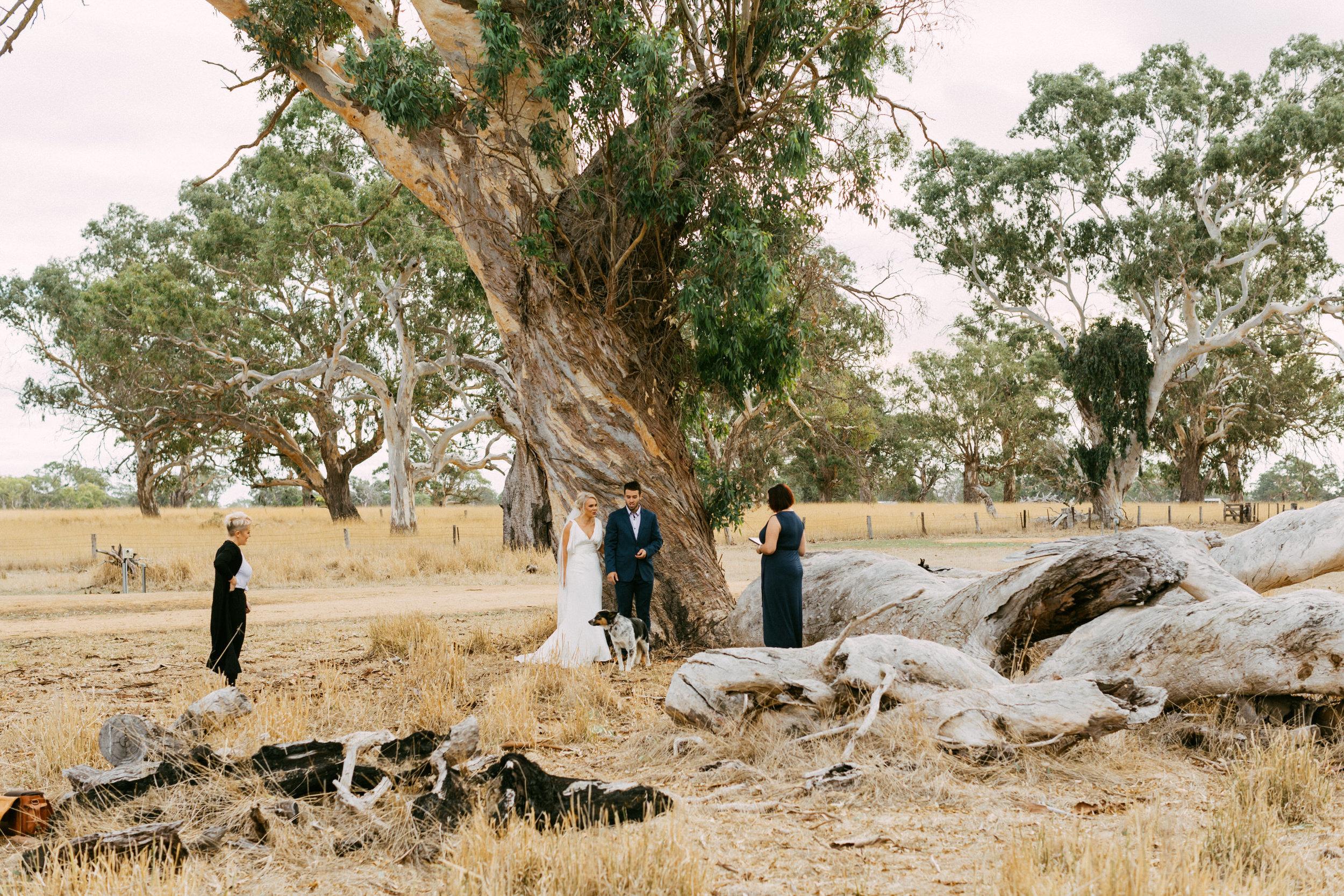 Coonawarra Elopement South Australia 022.jpg